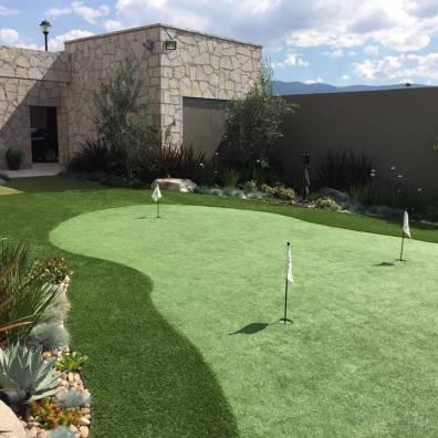 putting green in phoenix backyard