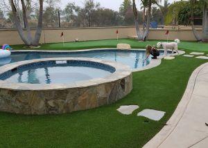 backyard artificial grass landscaping and putting green