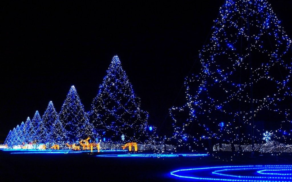 Christmas Wallpapers Tree Blue Light Backgrounds