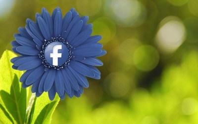 Study Reveals Most Effective Online Marketing Strategies
