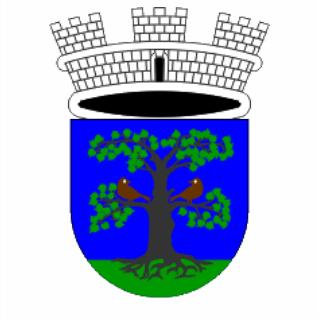 2018 4 Sevnica