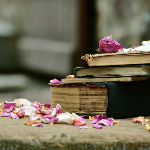 Célia Dreams: club de lecture belge virtuel Je Book'in