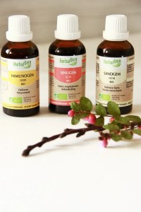Gemmothérapie: mes chouchous de la gamme HerbalGem