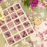 Glaçons de fleurs de lila