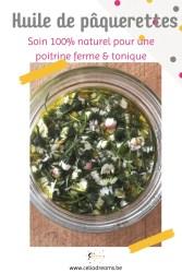 Soin naturel pour le buste: macérât huileux de pâquerettes (Bellis perennis)