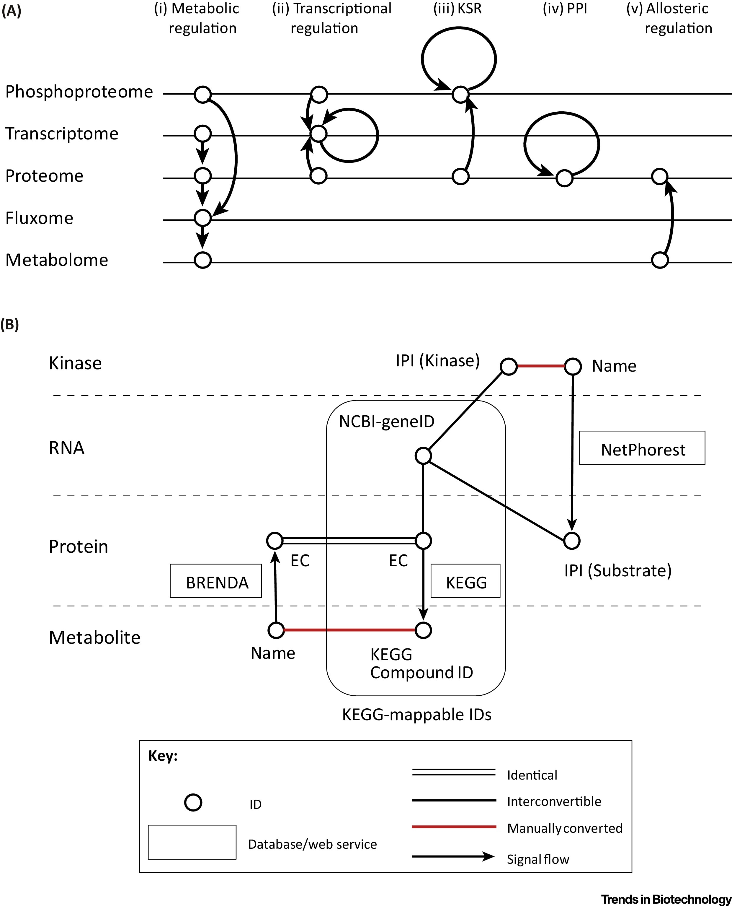 Trans-Omics: How To Reconstruct Biochemical Networks