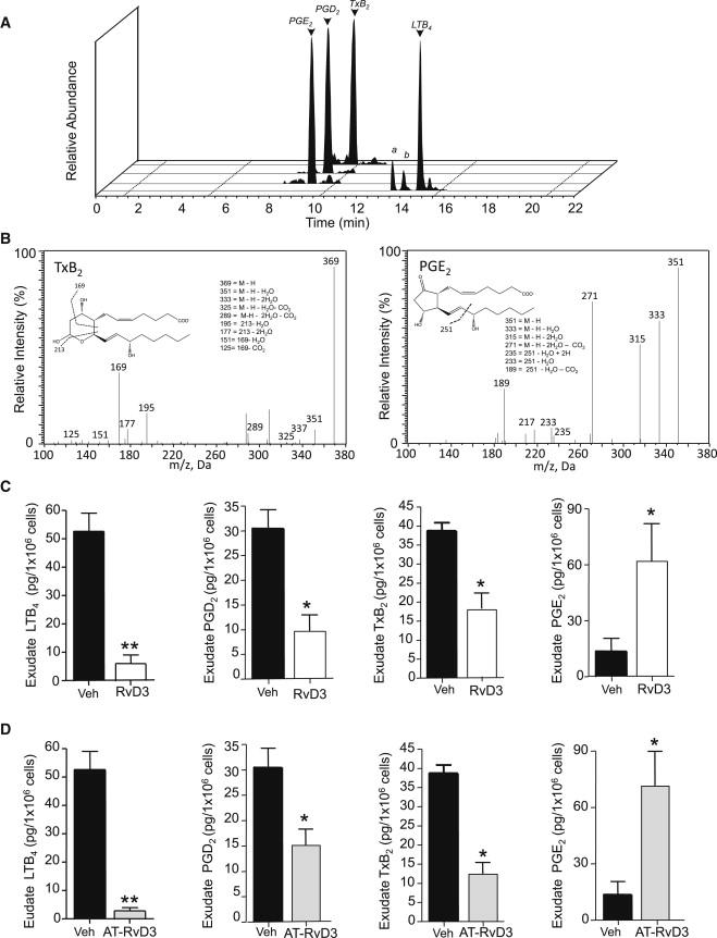 Resolvin D3 and Aspirin-Triggered Resolvin D3 Are Potent