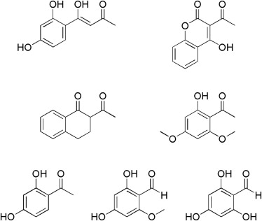 Characterization of a Fungal Thioesterase Having Claisen