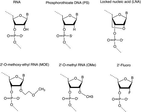 RNA-Based Therapeutics: Current Progress and Future