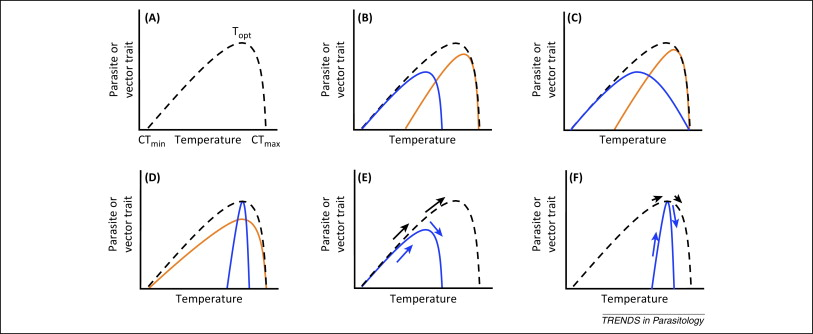Local adaptation to temperature and the implications for