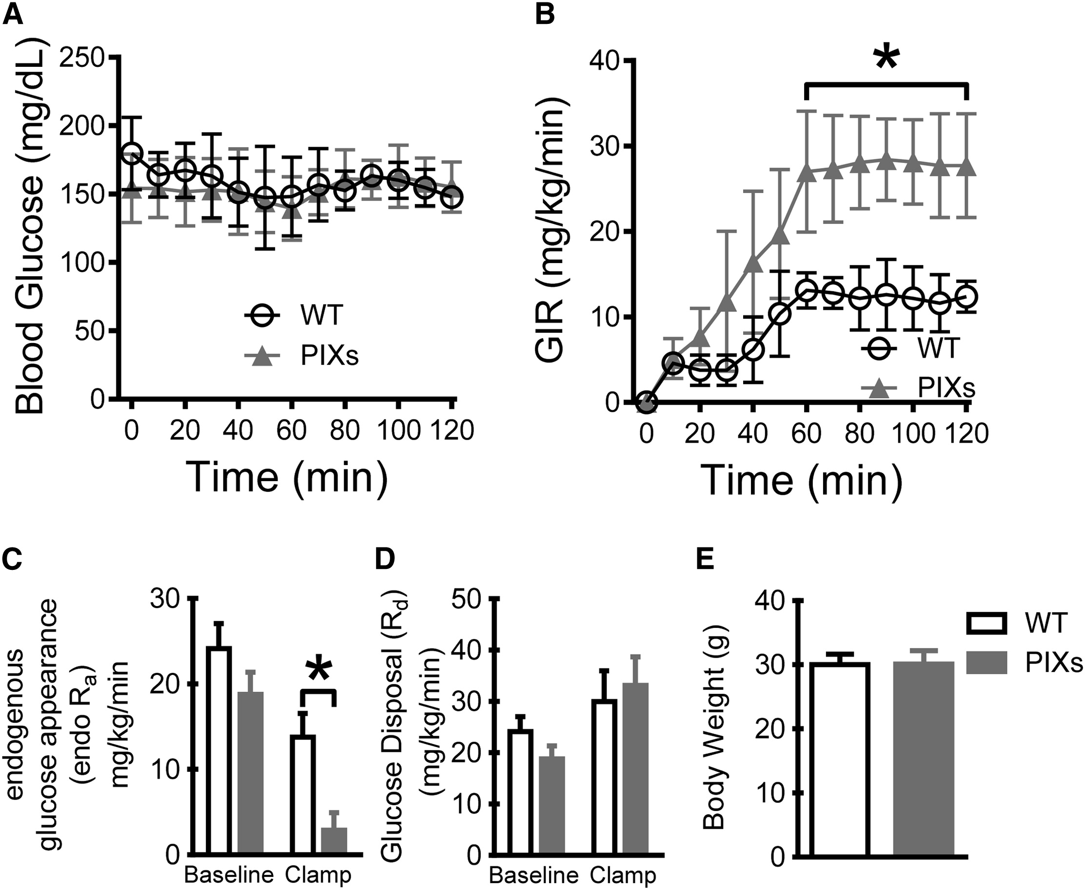 Xbp1s in Pomc Neurons Connects ER Stress with Energy