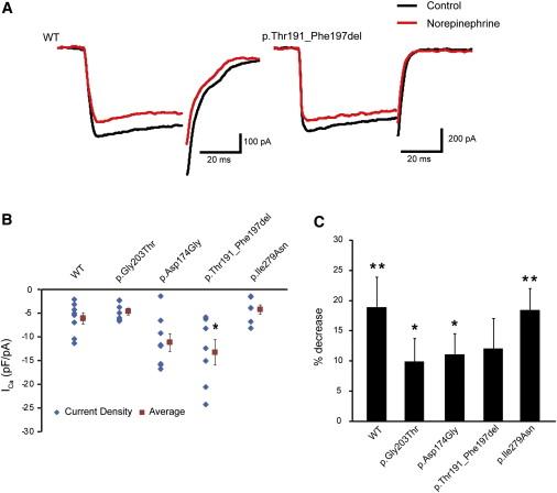 De Novo Mutations in GNAO1, Encoding a Gαo Subunit of