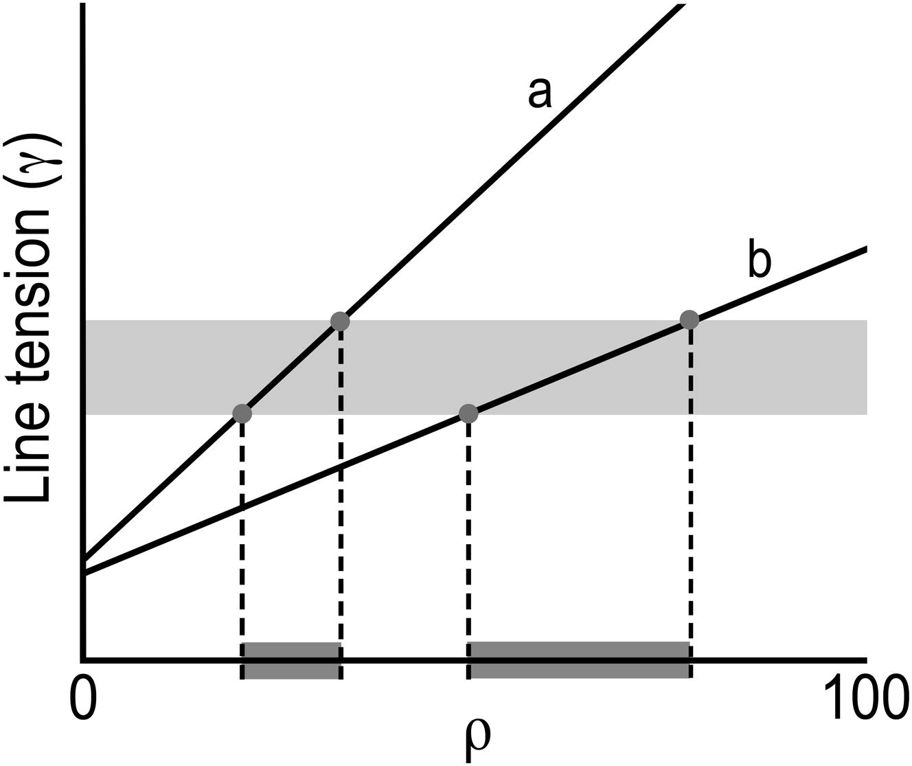 Toward A Better Raft Model Modulated Phases In The Four