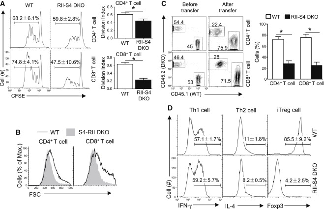 A Critical Role for Transcription Factor Smad4 in T Cell