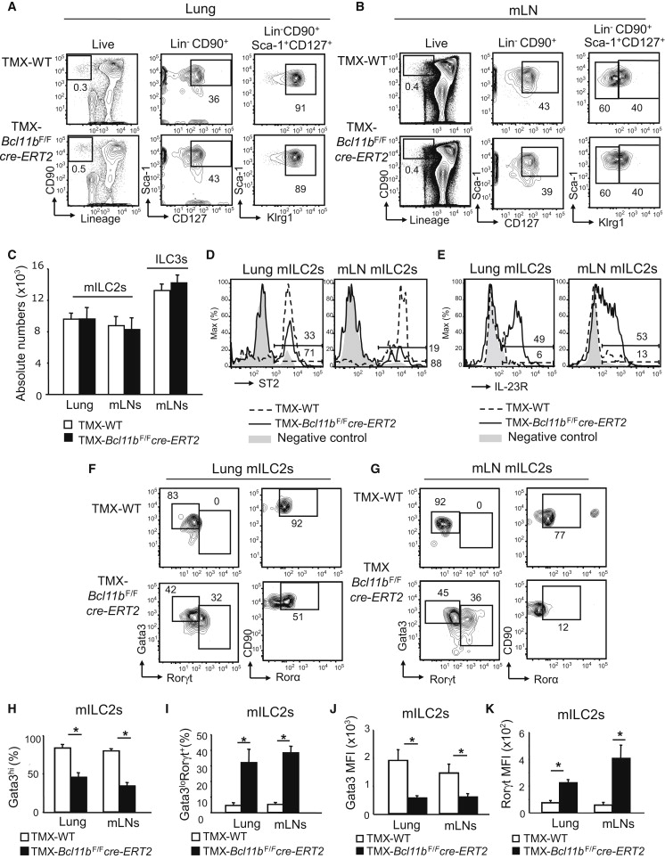 Transcription Factor Bcl11b Controls Identity and Function