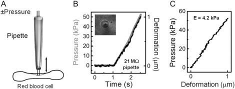 Noncontact Measurement of the Local Mechanical Properties
