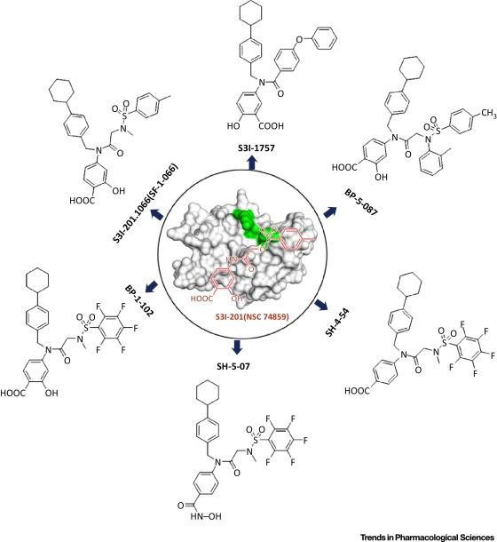 Feedback Activation of STAT3 as a Cancer Drug-Resistance