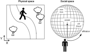The Hippocampus as a Cognitive Map … of Social Space: Neuron