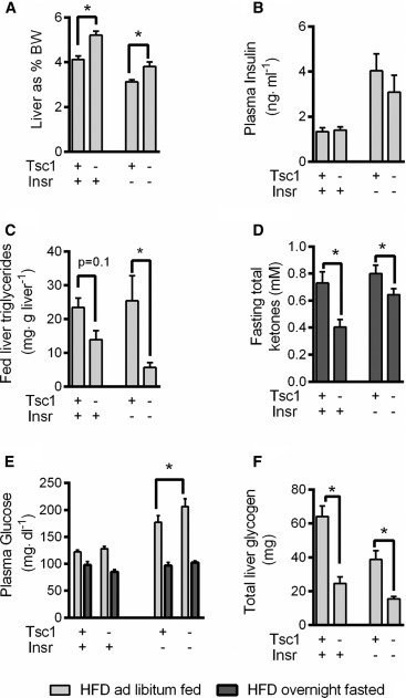 Hepatic mTORC1 Opposes Impaired Insulin Action to Control