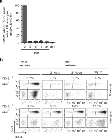 An Improved Bicistronic CD20/tCD34 Vector for Efficient