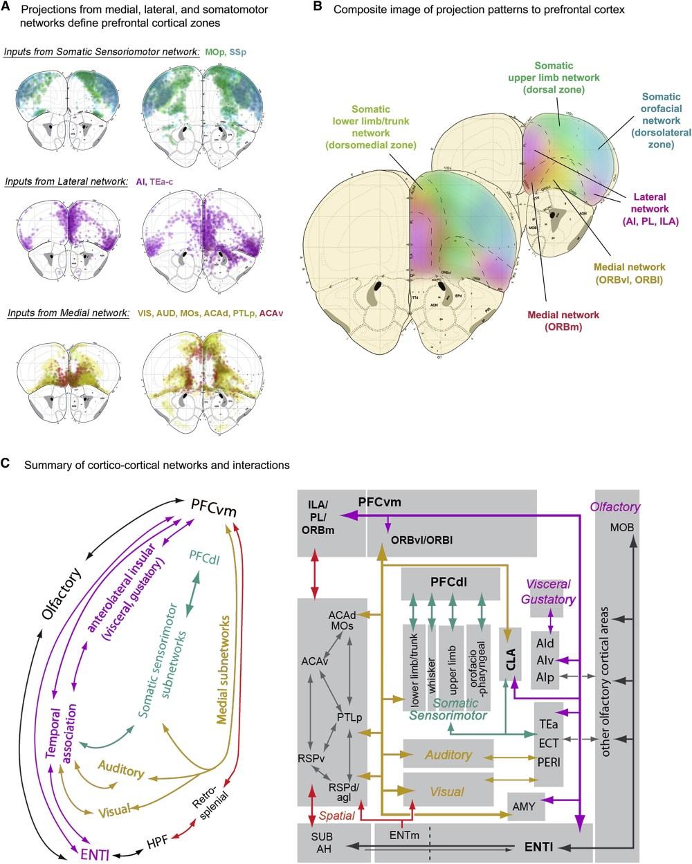 medium resolution of d727 fasco motor wiring diagram wiring schematic diagramfasco d701 wiring diagram circuit diagram maker fasco d725