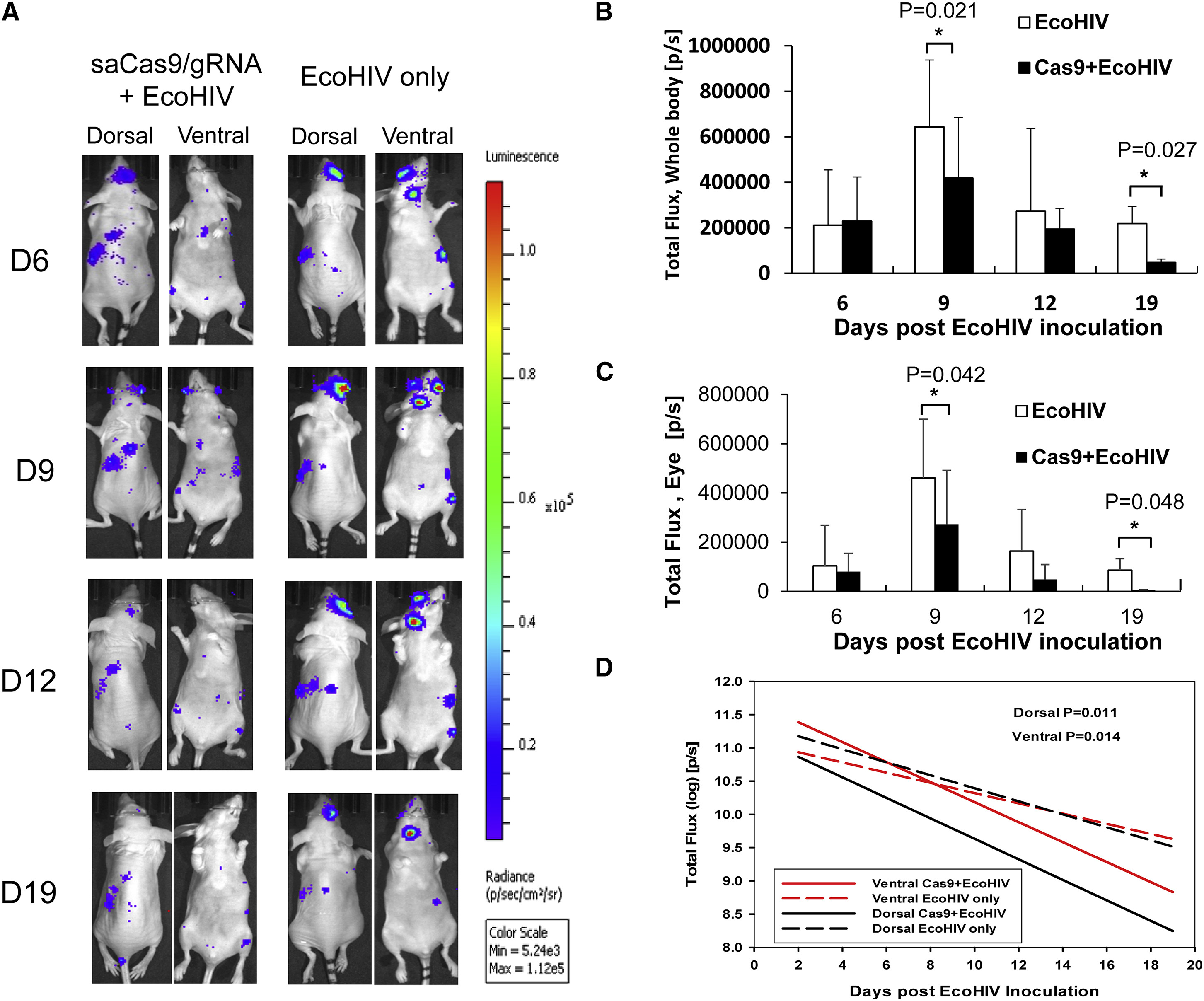 In Vivo Excision of HIV-1 Provirus by saCas9 and Multiplex
