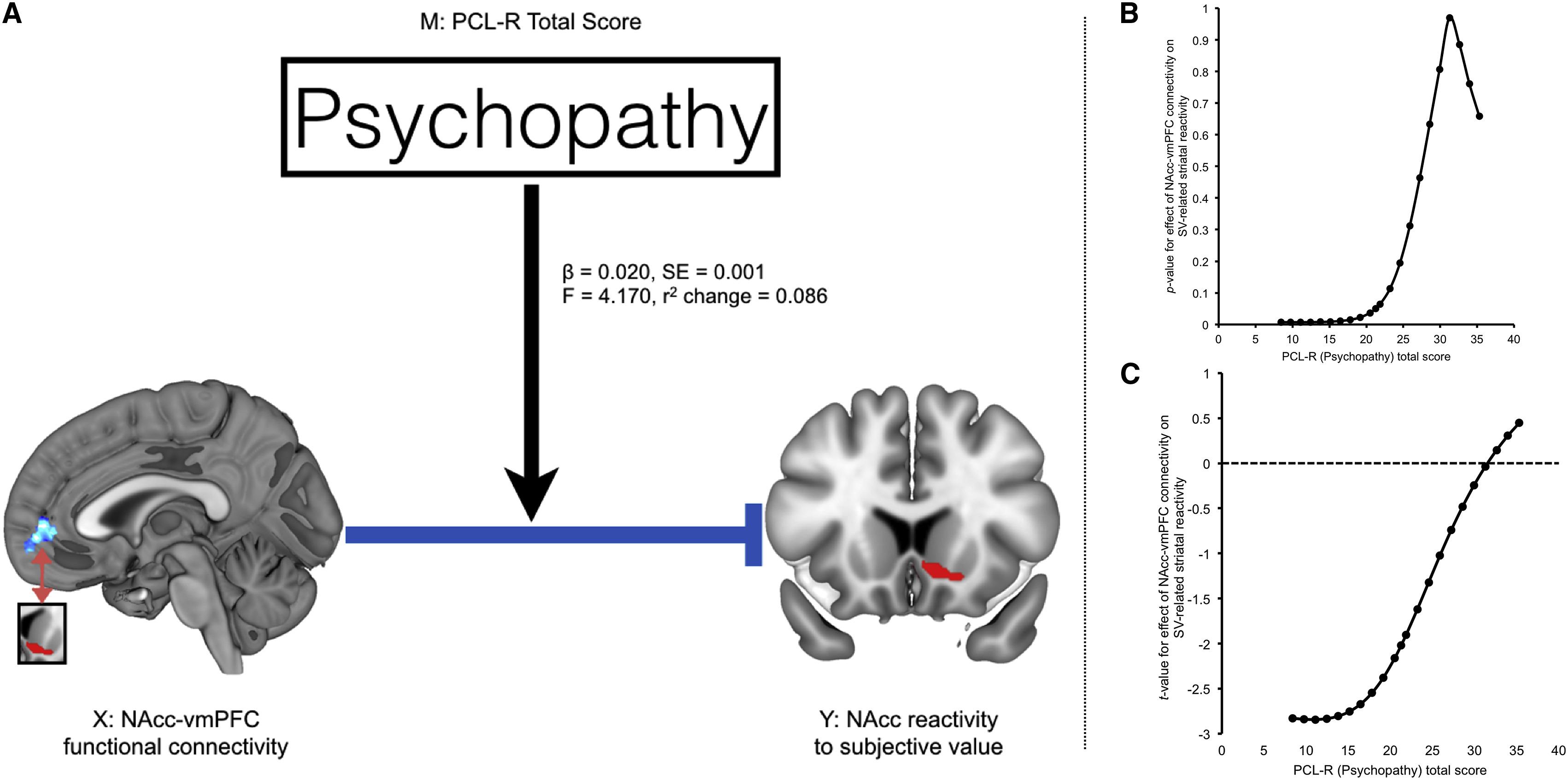 Disrupted Prefrontal Regulation Of Striatal Subjective