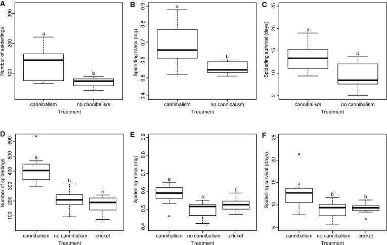 Males Can Benefit from Sexual Cannibalism Facilitated by