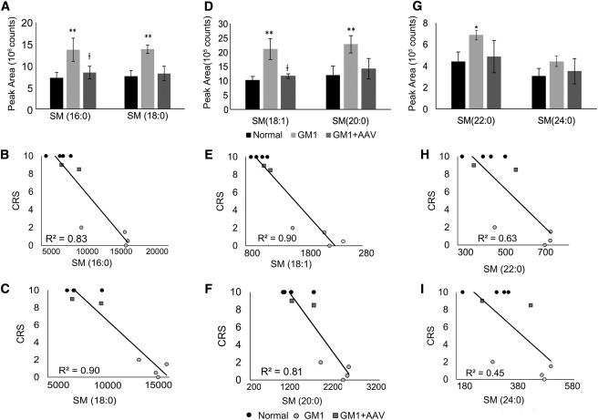 Lipidomic Evaluation of Feline Neurologic Disease after
