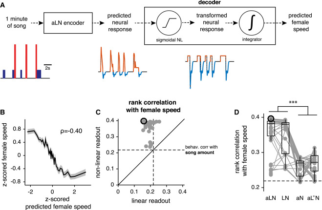 Connecting Neural Codes with Behavior in the Auditory