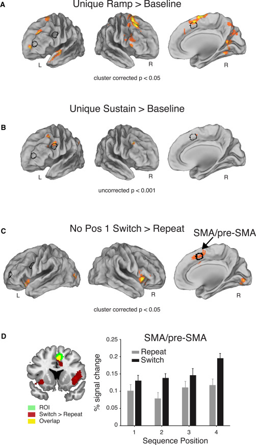 The Necessity of Rostrolateral Prefrontal Cortex for
