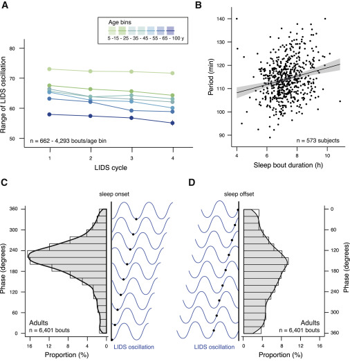 Dynamics and Ultradian Structure of Human Sleep in Real