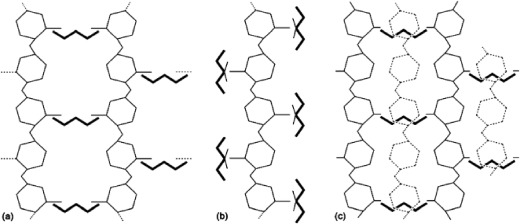 Degradability of chitosan micro/nanoparticles for