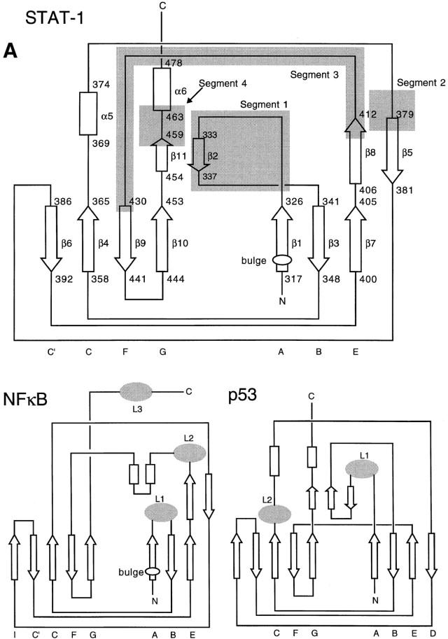 2014 Yamaha Fz1 Wiring Diagram. Diagram. Auto Wiring Diagram