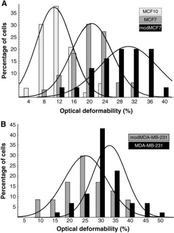 Optical Deformability as an Inherent Cell Marker for