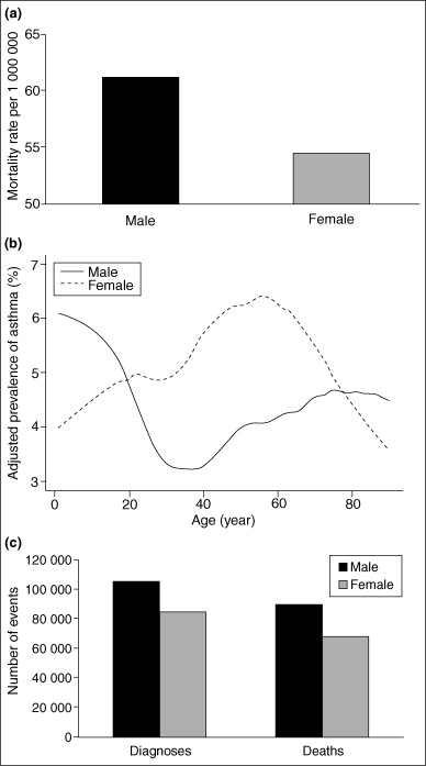 It's all about sex: gender, lung development and lung