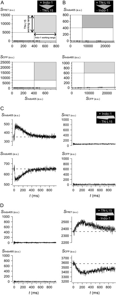 Live-Cell Transforms between Ca2+ Transients and FRET