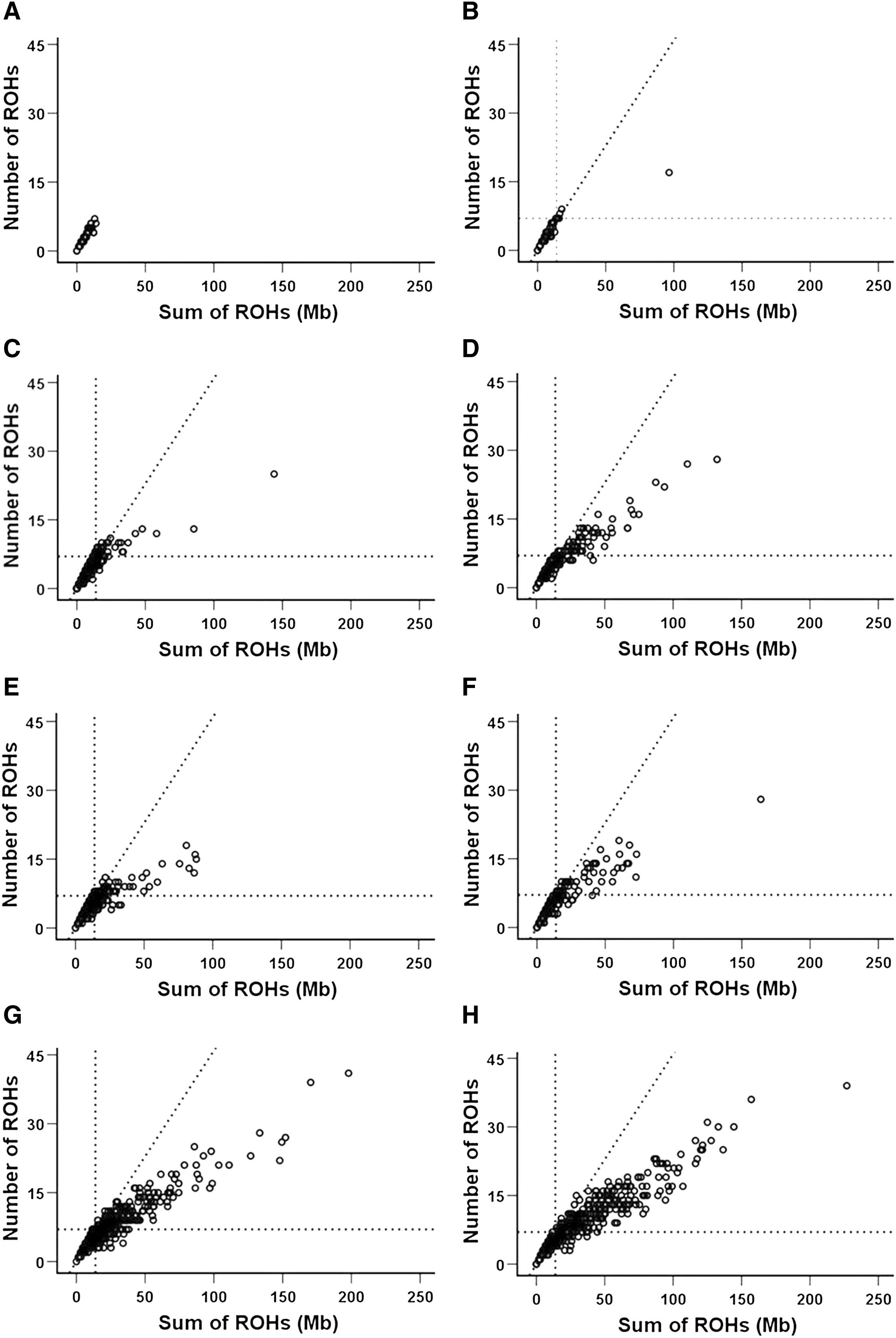 Runs of Homozygosity in European Populations: The American