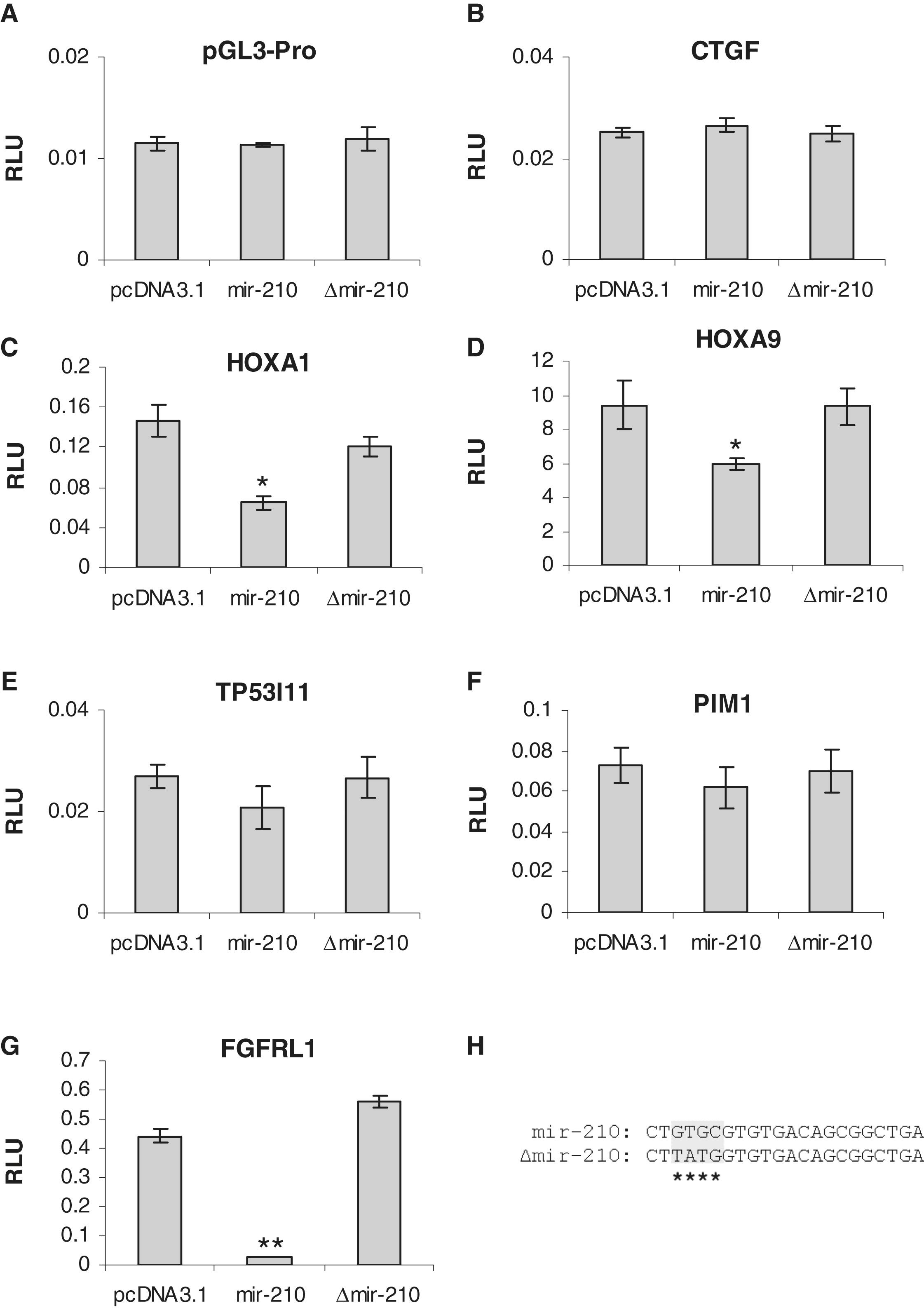 Hypoxia Inducible Mir 210 Regulates Normoxic Gene