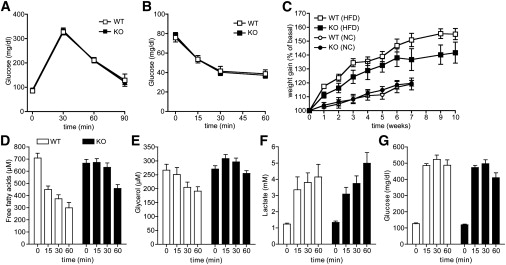 An Autocrine Lactate Loop Mediates Insulin-Dependent