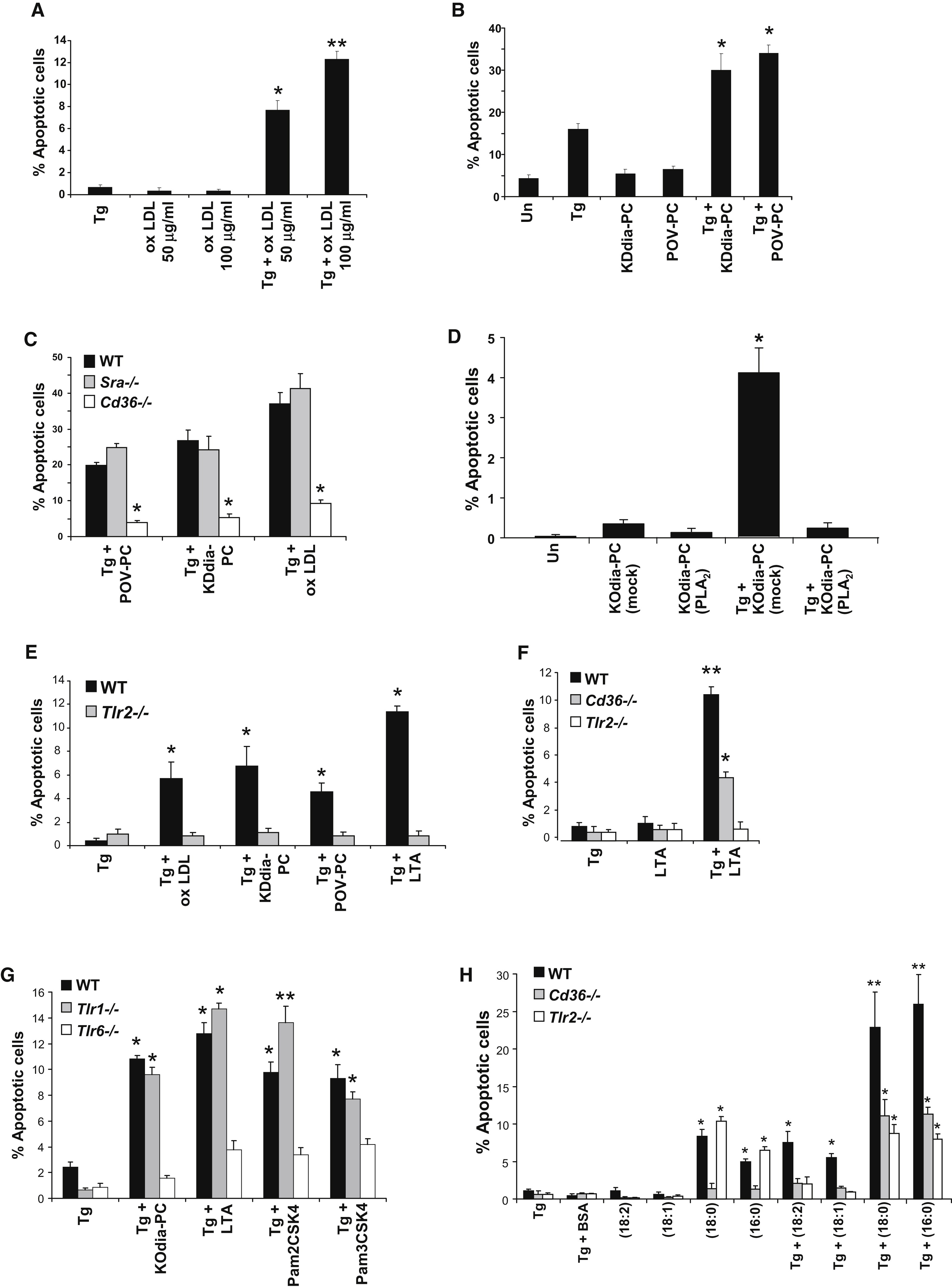 Atherogenic Lipids and Lipoproteins Trigger CD36-TLR2