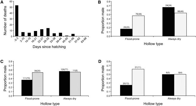 Adaptive Secondary Sex Ratio Adjustments via Sex-Specific