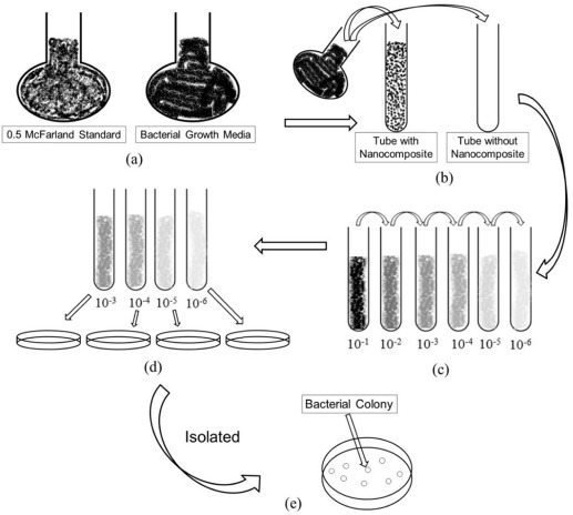 Structures, mechanical properties and antibacterial