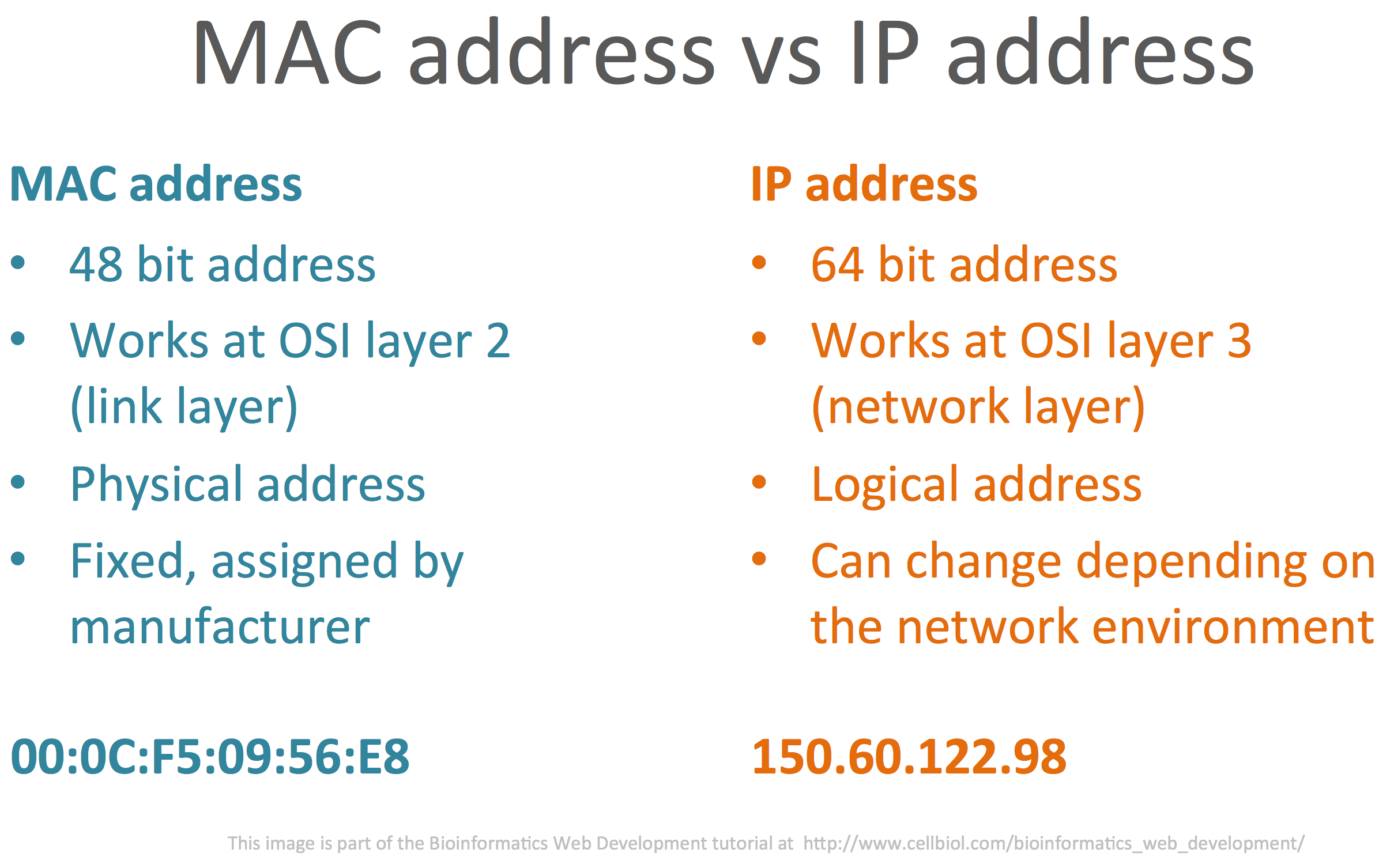 network ip addressing