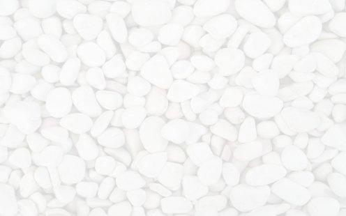 Cellfield - Rocks Image