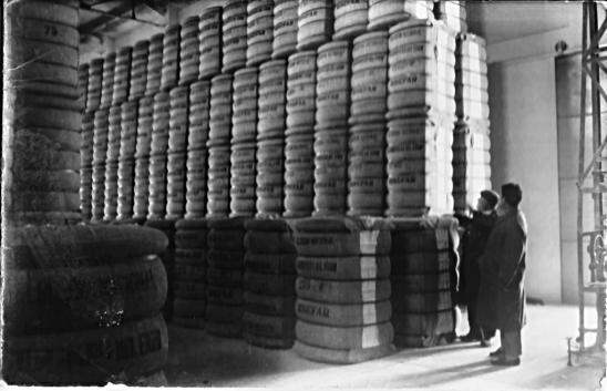 Binéfar, hacia 1955: la Algodonera, balas de algodón (fondo CELLIT)