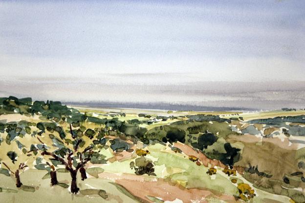 Camino de Alcampell (acuarela de Fernando Alvira)