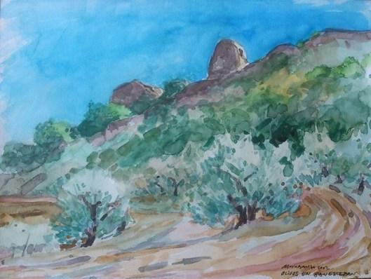 Olivos en San Esteban (acuarela de Fernando Alvira)