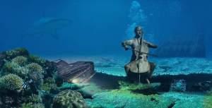 Cello. Practice. Performance