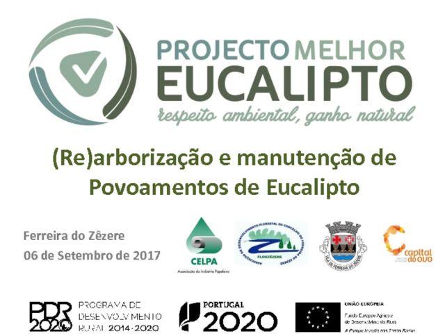 miniatura de CELPA_PMEuc_FERREIRAZÊZERE_06092017